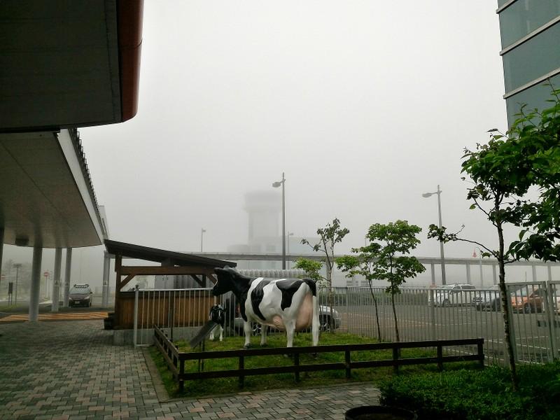 霧の釧路空港